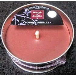 Bougie parfumée pomme cannelle