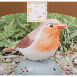 Oiseau Accueil orange