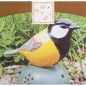 Oiseau Accueil jaune