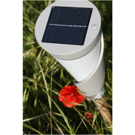 Lampe solaire de jardin Volubilis