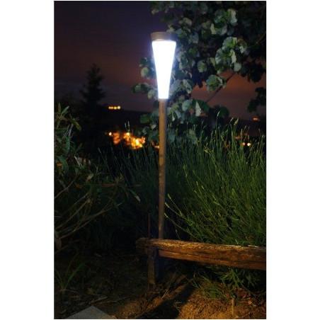 Lampe solaire haute roseau